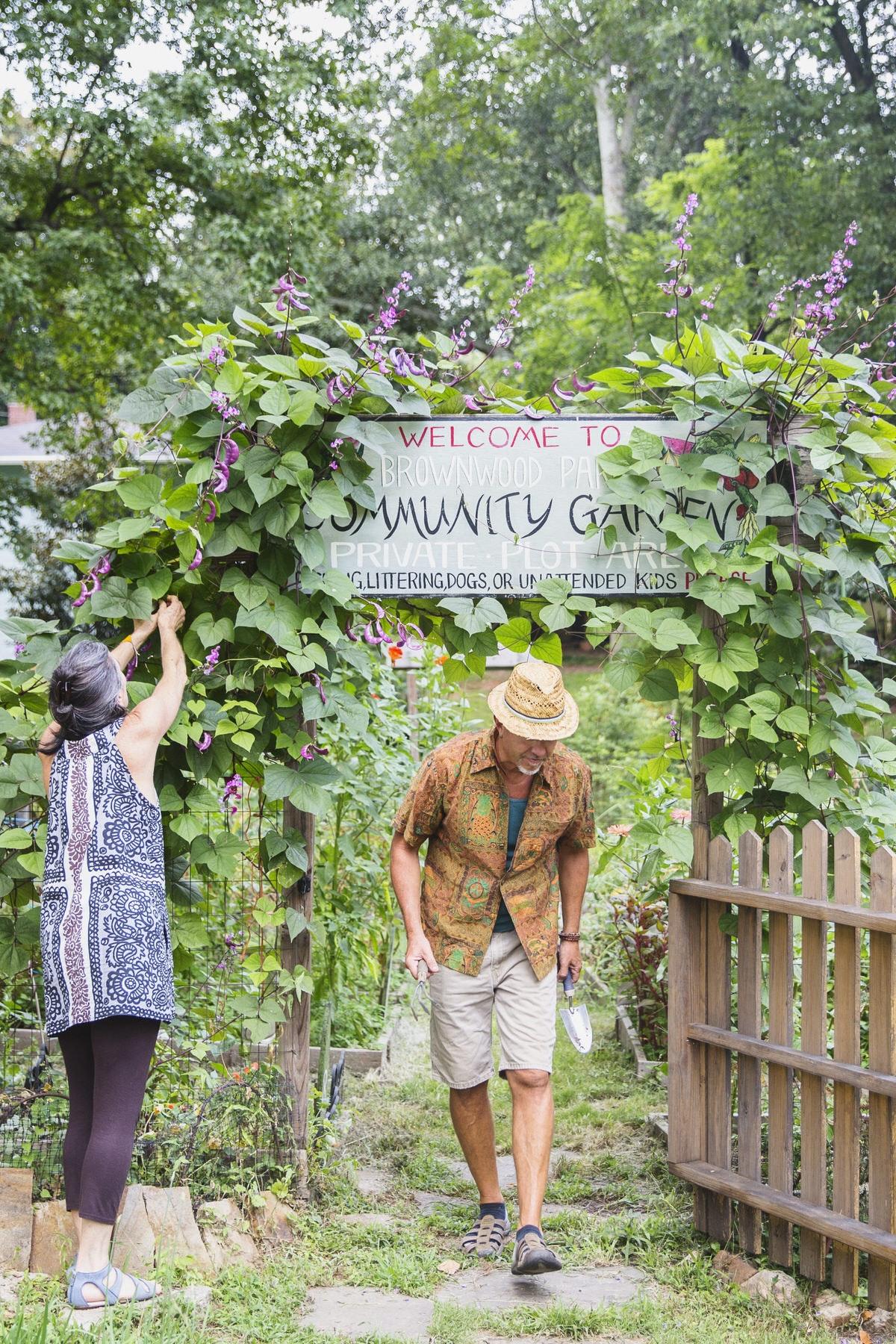 Brownwood Park Community Garden