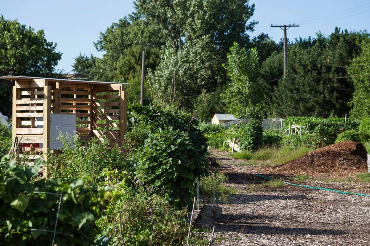 Global Gardens Community Garden and Refugee Training Farm