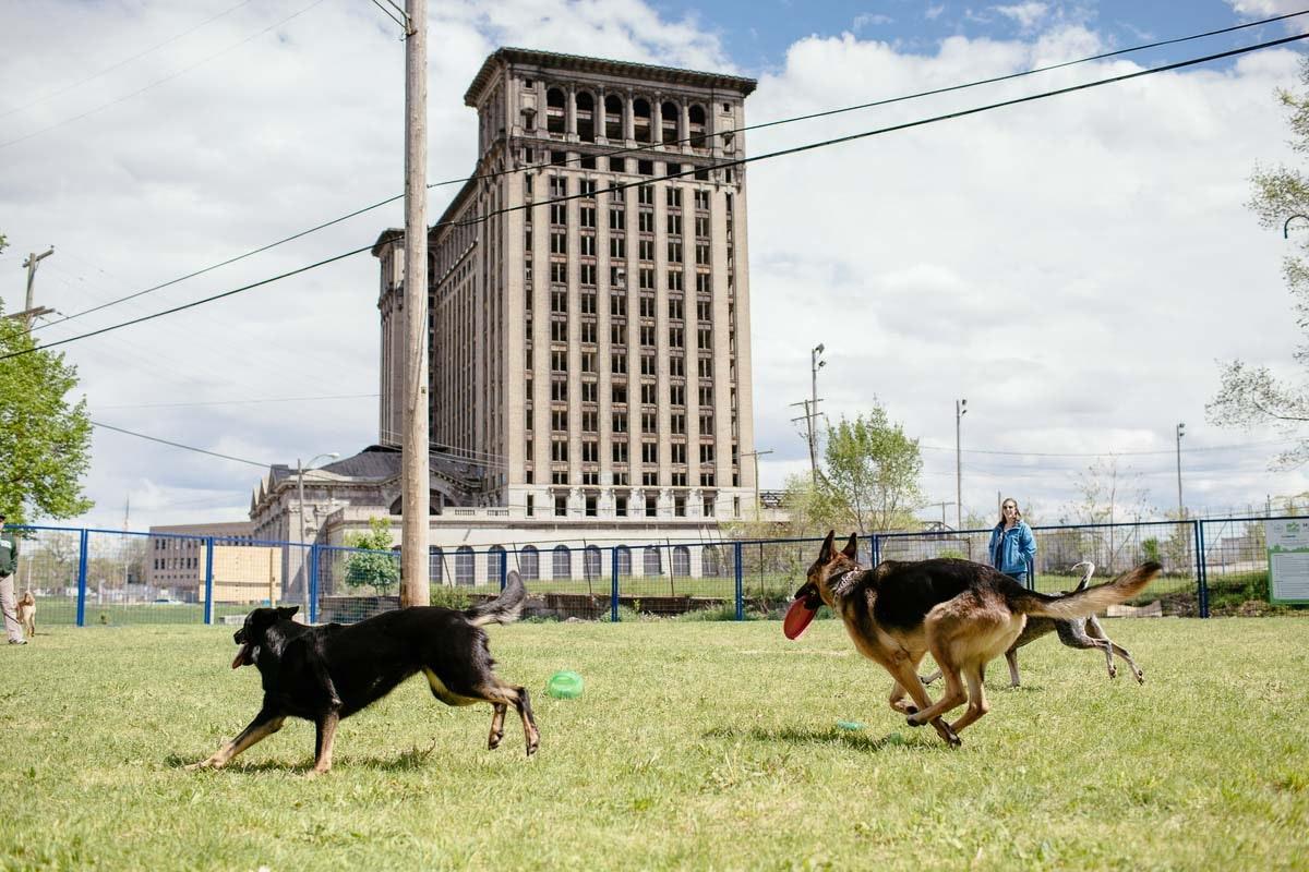 Detroit Dog Park
