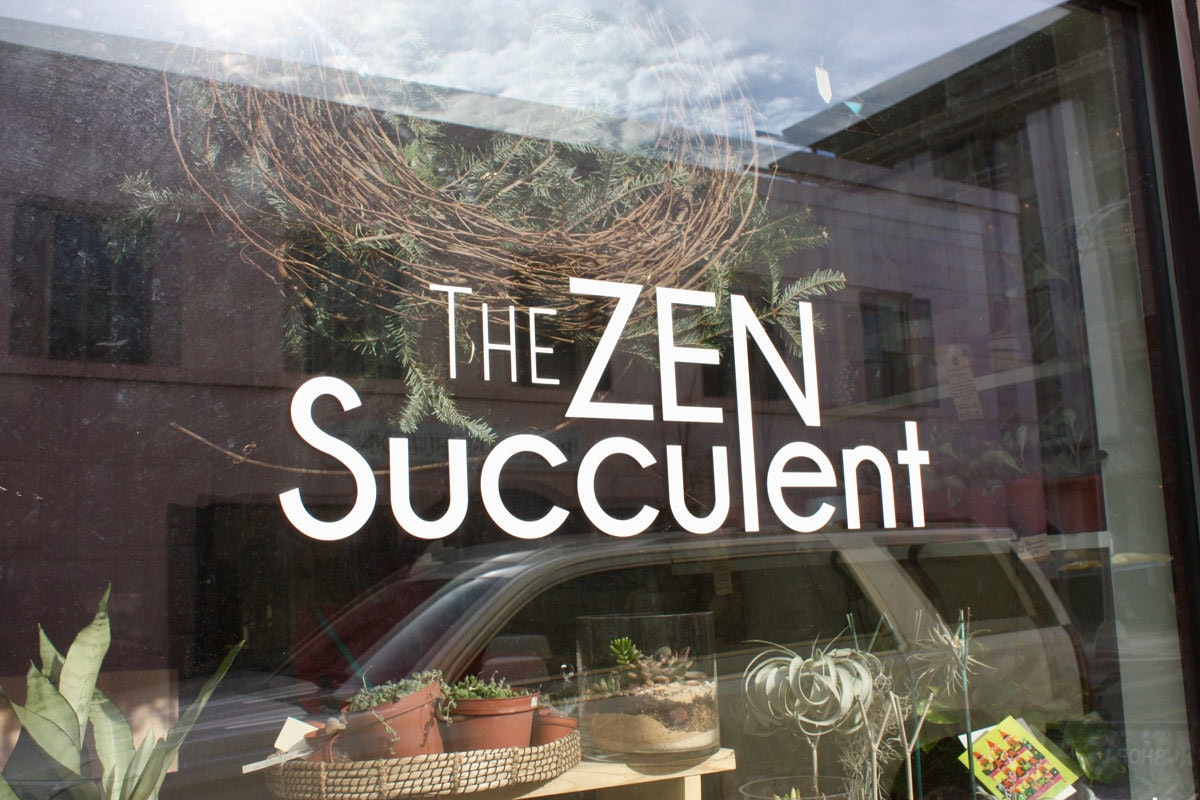 The Zen Succulent