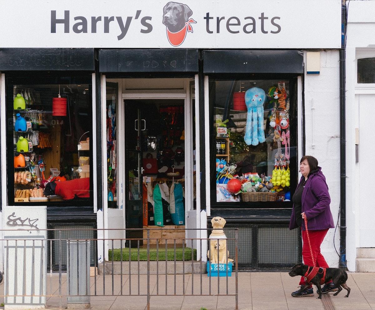 Harry's Treats & Dog Bakery