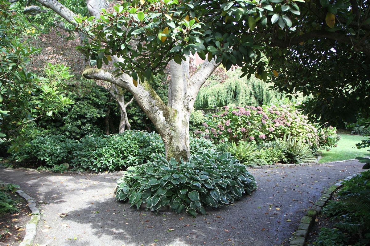 Parsons Gardens