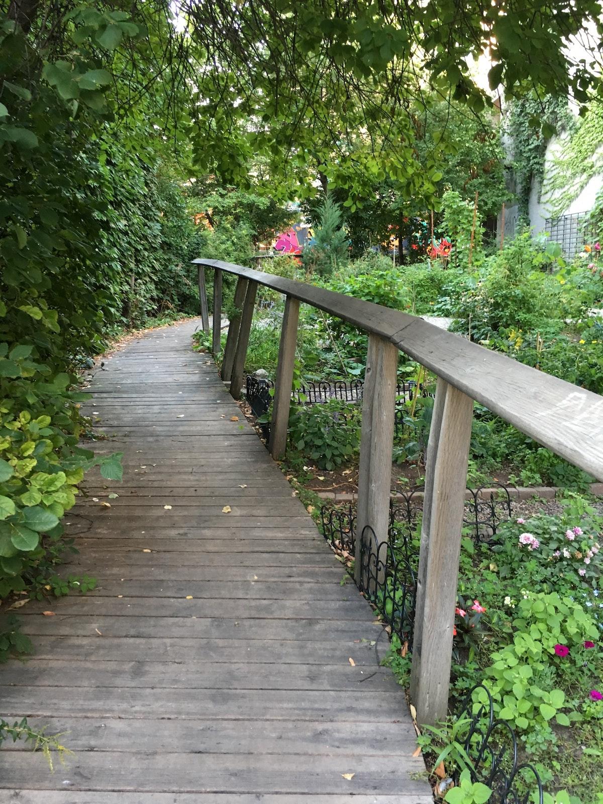 Alex Wilson Community Garden