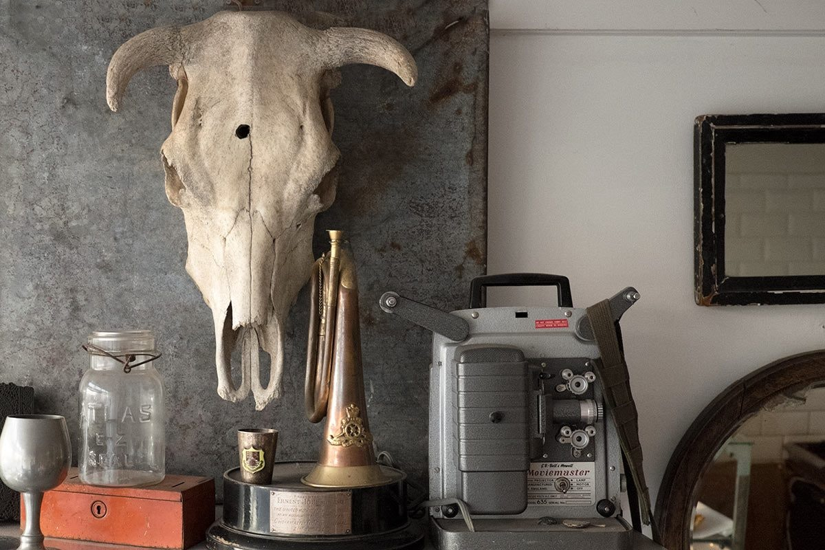Bison Coffee